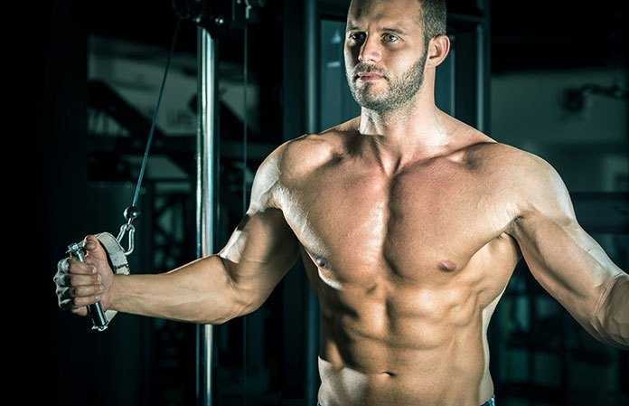 workout plans for men to build muscle